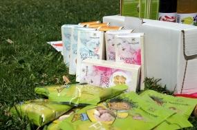 Foodblogger Picknick 13